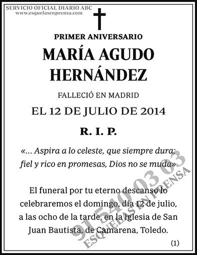 María Agudo Hernández